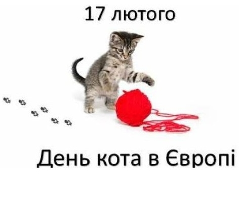 17 лютого - день кота у європі