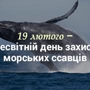 19 лютого – Всесвітній день захисту морських ссавців